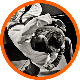 Brazilian Jiu-Jitsu for MMA image